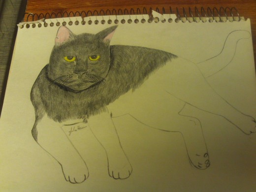 Drawing Irina The Cat