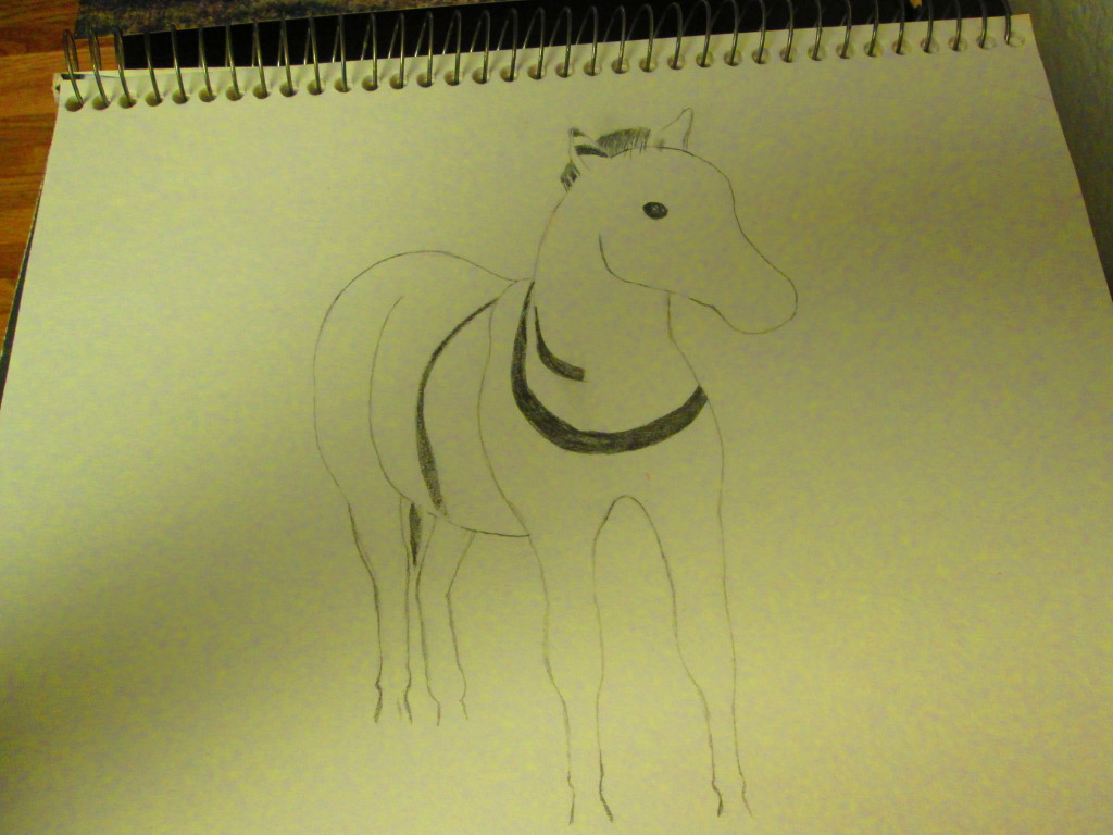 Beginning to draw the outline for the zebra.