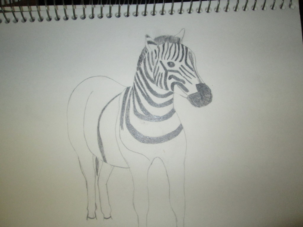 Here I am beginning to add the stripes to the zebra. Also, I finished drawing his face.