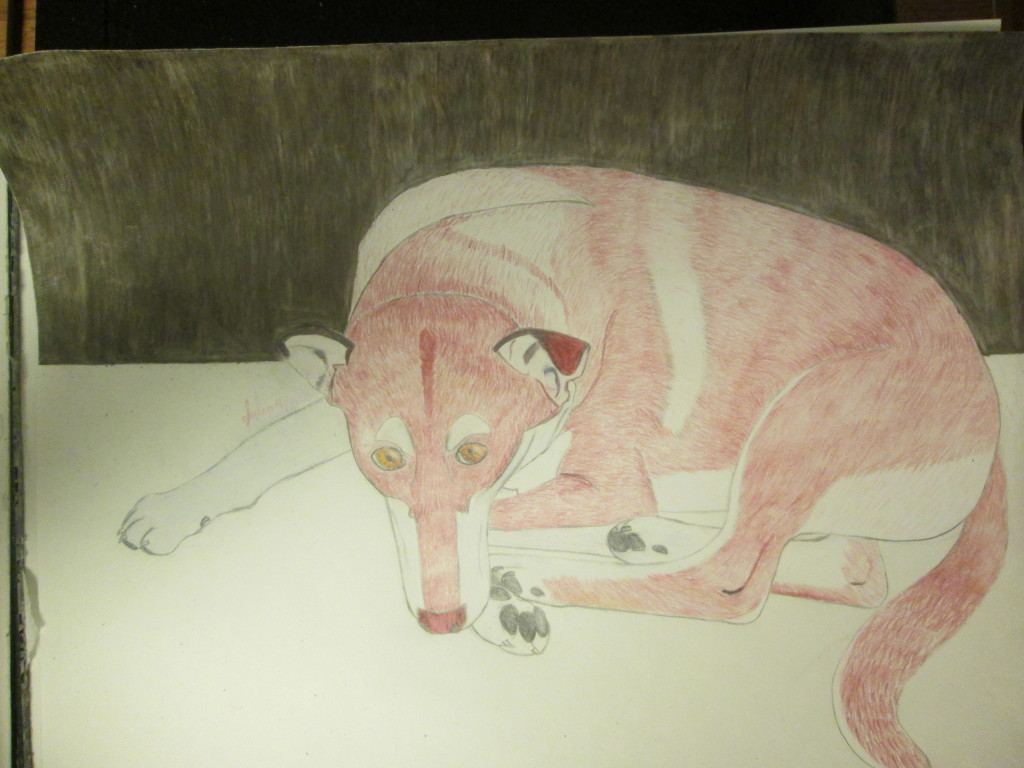 The wood background behind Lady dog was created by burnishing together dark brown, sepia, and white colored pencils.