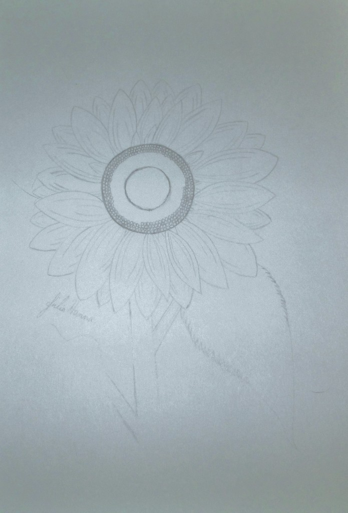 The first step of drawing the sunflower was to create an outline sketch.