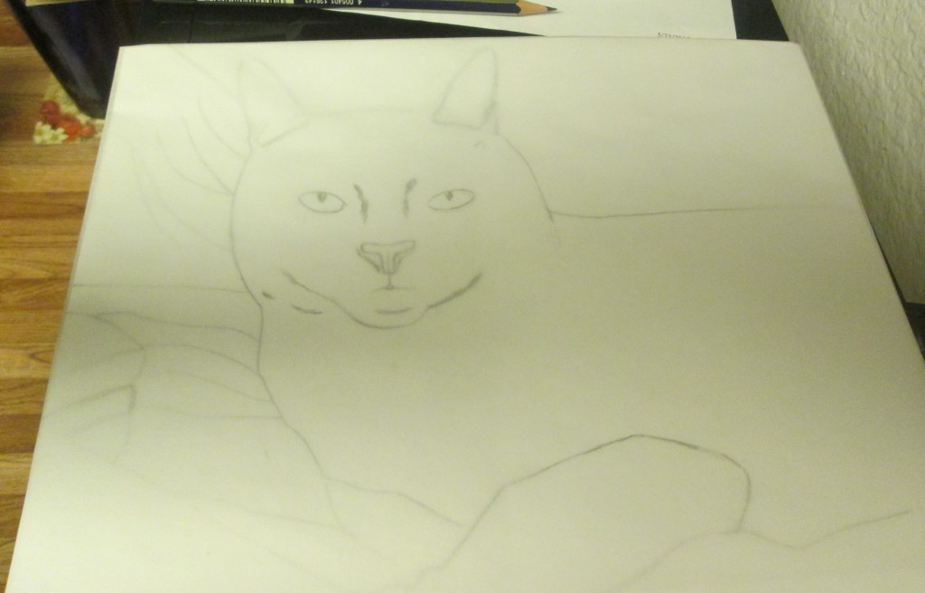 I taped the tracing paper over the rough draft sketch of Irina the cat.