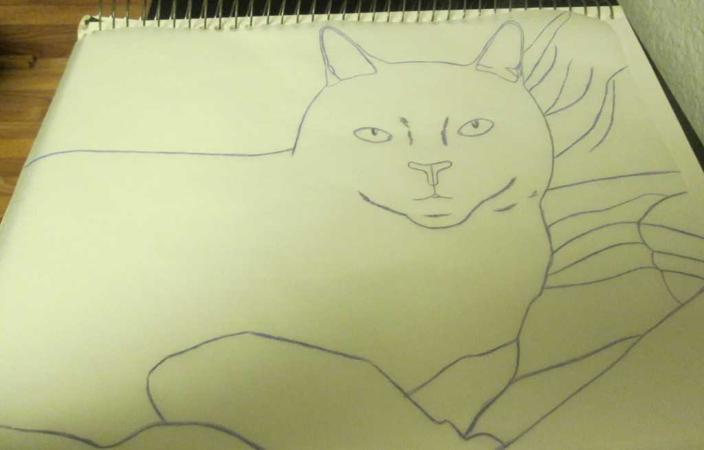 I traced the back side of the tracing paper with a violet colored pencil.
