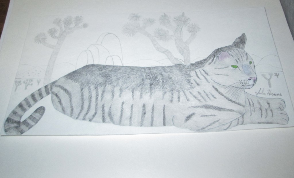 I drew a Johsua tree covered vista behind Stripey cat.