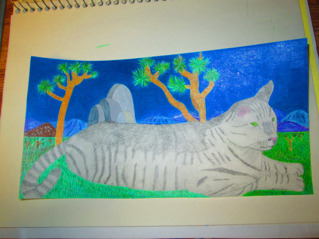 The completed drawing of Stripey cat at Joshua tree.